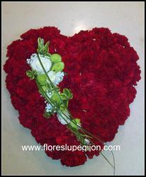 Corazón de clavel rojo con detalle blanco.
